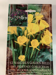 NARCISSE X12 GOLDEN BELLS