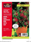 CALLISTEMON MASOTI 'MINI RED' 4 L